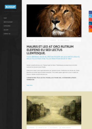 Responsive Blog WordPress Theme - BlogGap