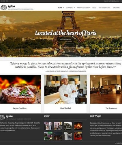 Igloo Restaurant Wordpress Theme CSSIgniter 5 Cssigniter Contest   Win an Annual Subscription and Access to All Themes