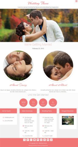 Professional Wedding Website Wedding WordPress Theme