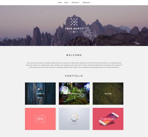 Simple Clean Free WordPress Theme True North