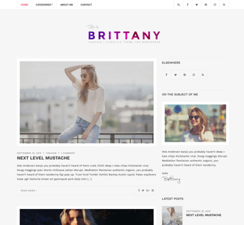 Clean Free Wordpress Theme Brittany